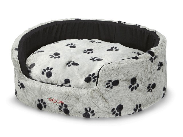 Buddy Bed