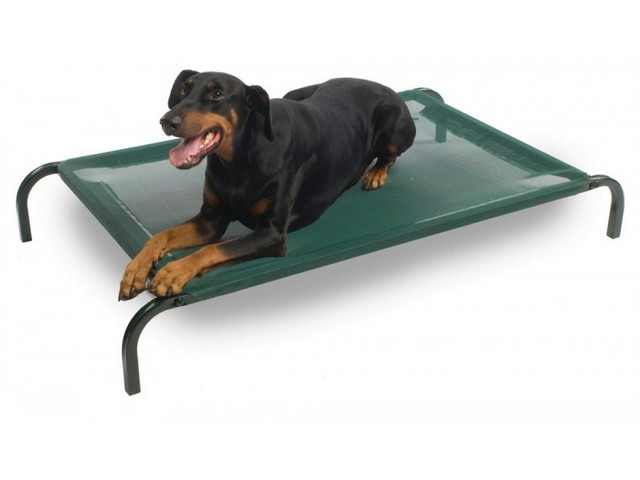 Flea-Free Dog Bed