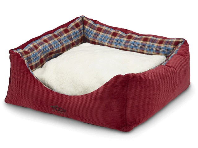 Jack's Bed Woolly