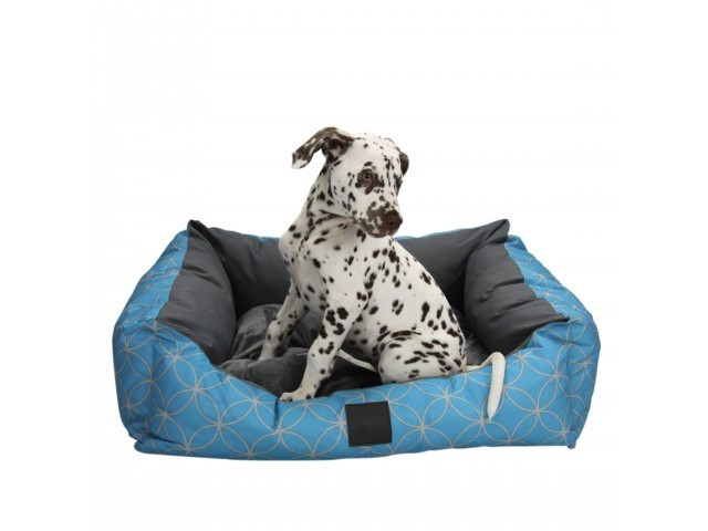 ISleep Dog Bed
