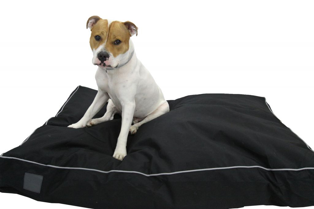 Enduro Pet Cushion Black